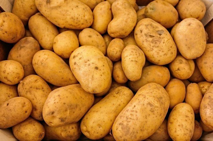 Kartoffeln.jpg.jpg